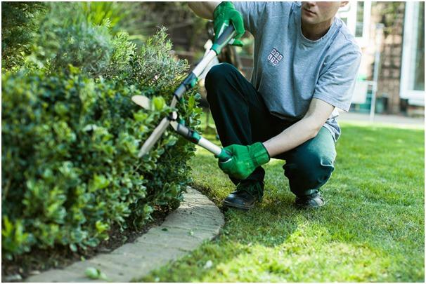 garden services Singapore