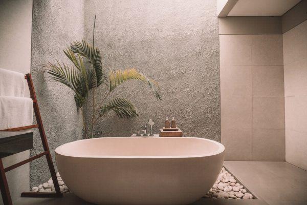 an eco-friendly bathroom with a plant